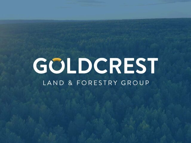 Goldcrest Land & Forestry Group | Main Image